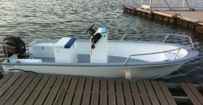Seagull 500